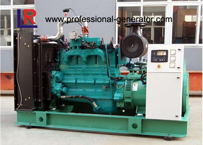 Open Type 250kVA Cummins Gas Generator Sets with AC 3 Phase , Woodward Speed Governor